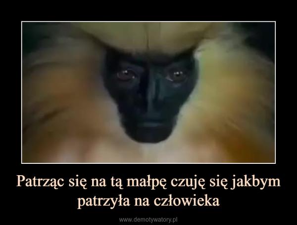 Patrząc się na tą małpę czuję się jakbym patrzyła na człowieka –