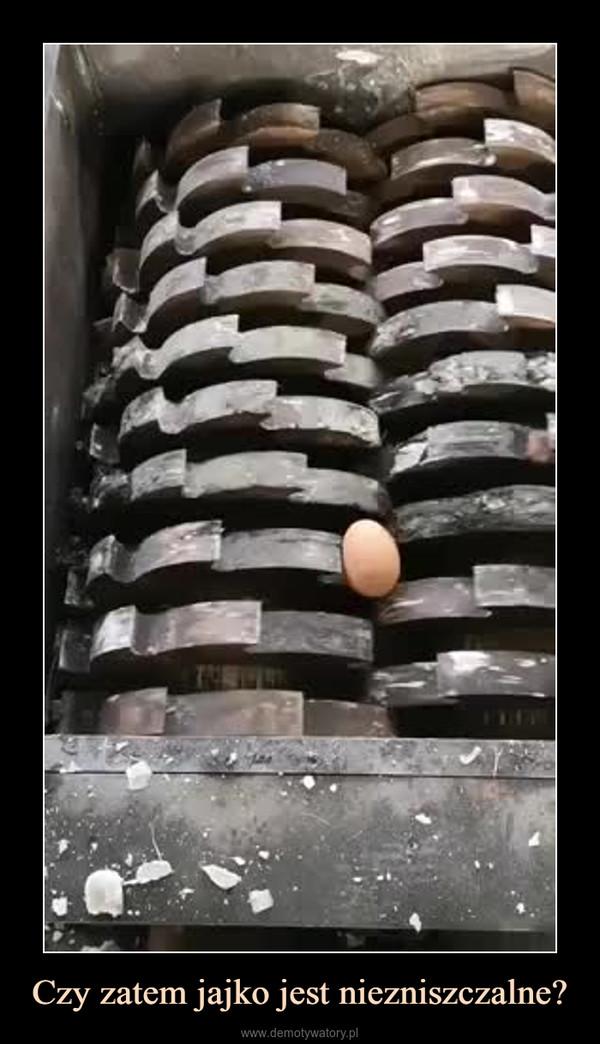 Czy zatem jajko jest niezniszczalne? –