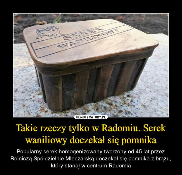 Takie rzeczy tylko w Radomiu. Serek waniliowy doczekał się pomnika – Popularny serek homogenizowany tworzony od 45 lat przez Rolniczą Spółdzielnie Mleczarską doczekał się pomnika z brązu, który stanął w centrum Radomia