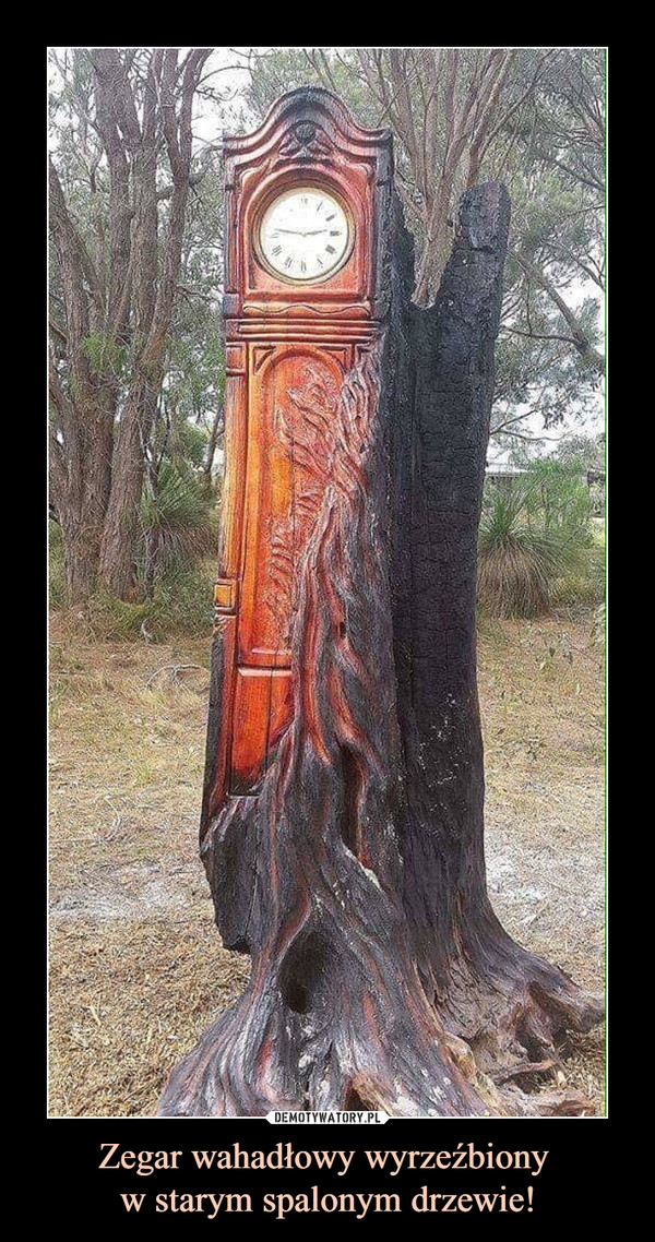 Zegar wahadłowy wyrzeźbiony w starym spalonym drzewie! –
