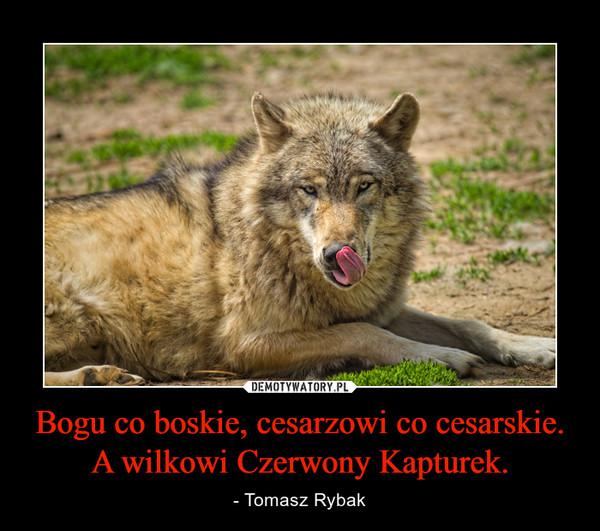 Bogu co boskie, cesarzowi co cesarskie.A wilkowi Czerwony Kapturek. – - Tomasz Rybak