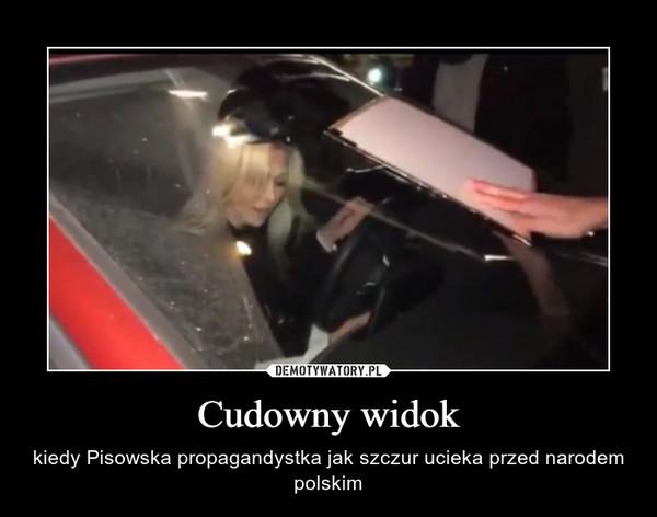 Cudowny widok – kiedy Pisowska propagandystka jak szczur ucieka przed narodem polskim
