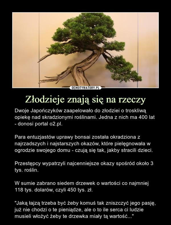 """Złodzieje znają się na rzeczy – Dwoje Japończyków zaapelowało do złodziei o troskliwą opiekę nad skradzionymi roślinami. Jedna z nich ma 400 lat - donosi portal o2.pl.Para entuzjastów uprawy bonsai została okradziona z najrzadszych i najstarszych okazów, które pielęgnowała w ogrodzie swojego domu - czują się tak, jakby stracili dzieci.Przestępcy wypatrzyli najcenniejsze okazy spośród około 3 tys. roślin.W sumie zabrano siedem drzewek o wartości co najmniej 118 tys. dolarów, czyli 450 tys. zł.""""Jaką łajzą trzeba być żeby komuś tak zniszczyć jego pasję, już nie chodzi o te pieniądze, ale o to ile serca ci ludzie musieli włożyć żeby te drzewka miały tą wartość..."""""""