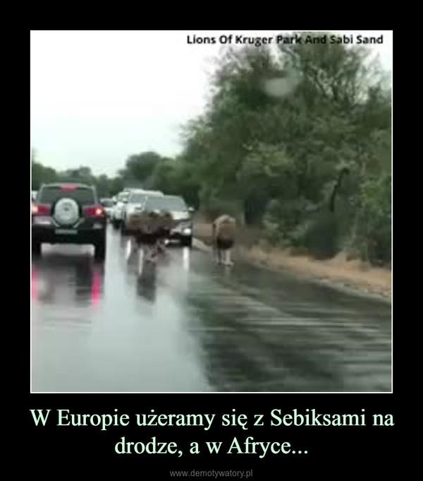 W Europie użeramy się z Sebiksami na drodze, a w Afryce... –