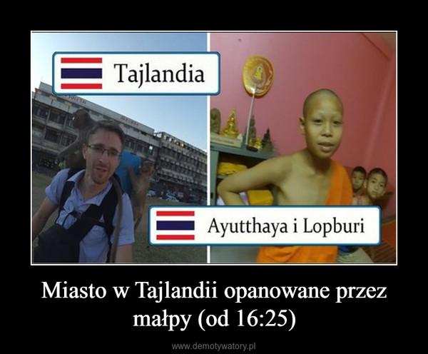 Miasto w Tajlandii opanowane przez małpy (od 16:25) –