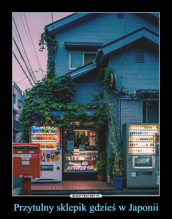 Przytulny sklepik gdzieś w Japonii –