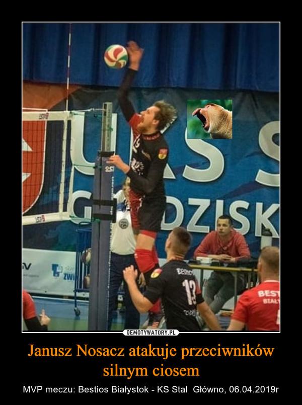Janusz Nosacz atakuje przeciwników silnym ciosem – MVP meczu: Bestios Białystok - KS Stal  Główno, 06.04.2019r