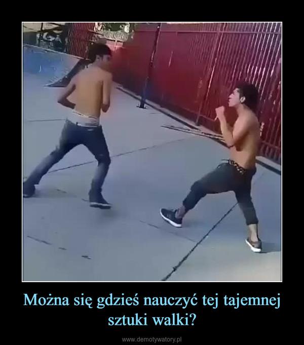 Można się gdzieś nauczyć tej tajemnej sztuki walki? –