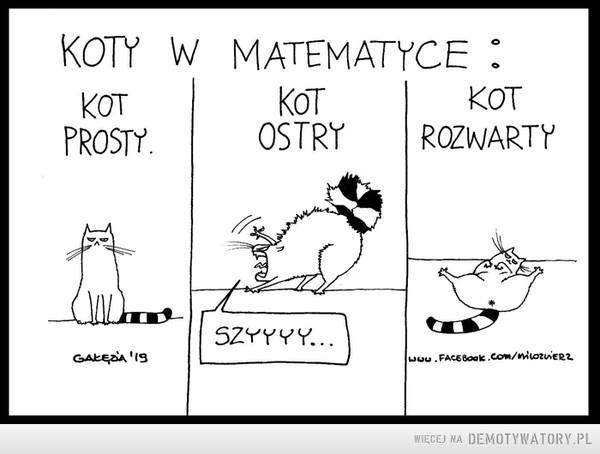 Koty w matematyce –  Koty w matematyce Kot prosty Kot Ostry Kot rozwarty