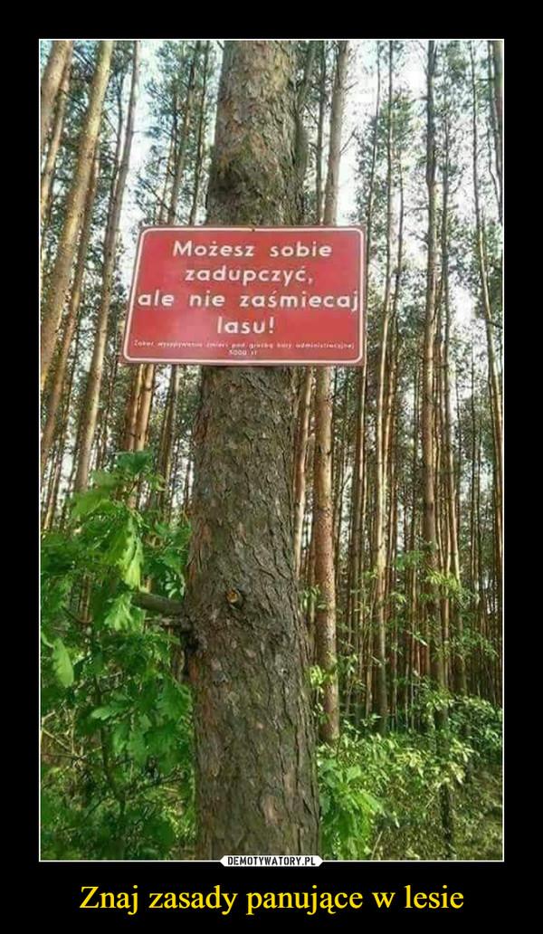 Znaj zasady panujące w lesie –