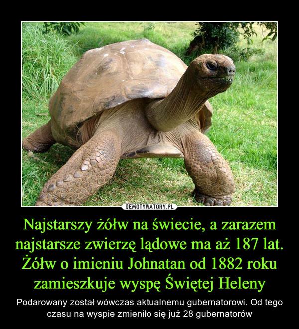 Najstarszy żółw na świecie, a zarazem najstarsze zwierzę lądowe ma aż 187 lat. Żółw o imieniu Johnatan od 1882 roku zamieszkuje wyspę Świętej Heleny – Podarowany został wówczas aktualnemu gubernatorowi. Od tego czasu na wyspie zmieniło się już 28 gubernatorów