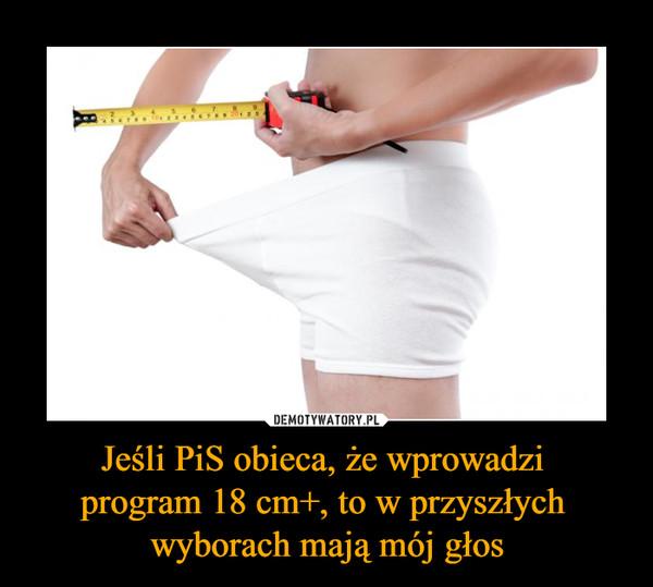 Jeśli PiS obieca, że wprowadzi program 18 cm+, to w przyszłych wyborach mają mój głos –