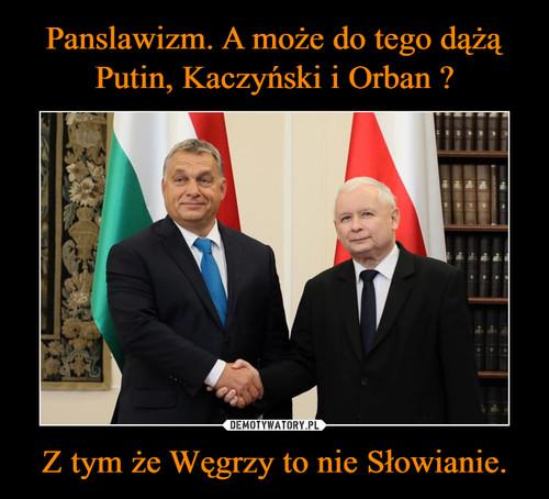 Panslawizm. A może do tego dążą Putin, Kaczyński i Orban ? Z tym że Węgrzy to nie Słowianie.