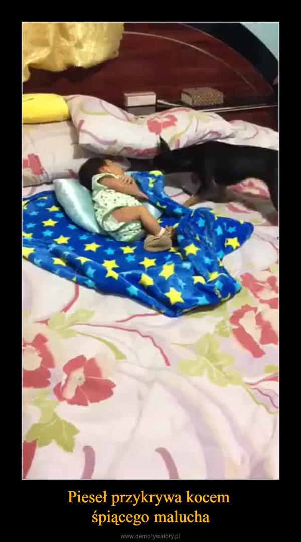 Pieseł przykrywa kocem śpiącego malucha –