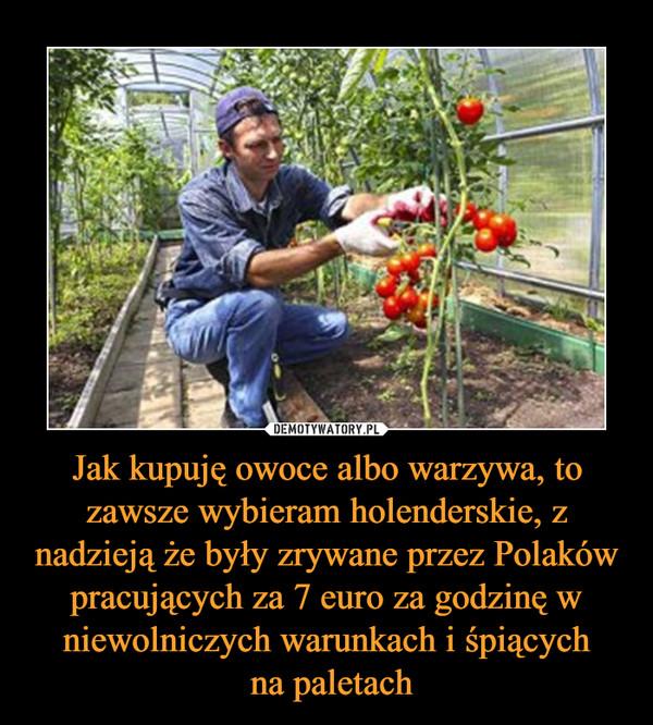 Jak kupuję owoce albo warzywa, to zawsze wybieram holenderskie, z nadzieją że były zrywane przez Polaków pracujących za 7 euro za godzinę w niewolniczych warunkach i śpiących na paletach –
