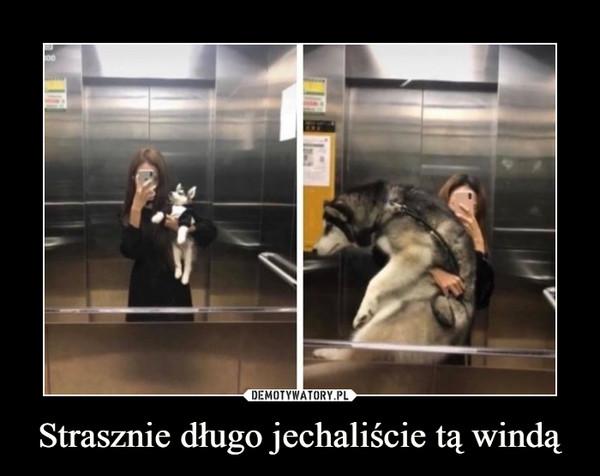 Strasznie długo jechaliście tą windą –