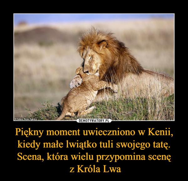 Piękny moment uwieczniono w Kenii, kiedy małe lwiątko tuli swojego tatę. Scena, która wielu przypomina scenę z Króla Lwa –