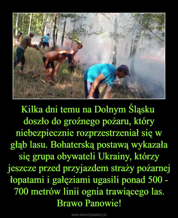 Kilka dni temu na Dolnym Śląsku doszło do groźnego pożaru, który niebezpiecznie rozprzestrzeniał się w głąb lasu. Bohaterską postawą wykazała się grupa obywateli Ukrainy, którzy jeszcze przed przyjazdem straży pożarnej łopatami i gałęziami ugasili ponad 500 - 700 metrów linii ognia trawiącego las. Brawo Panowie! –