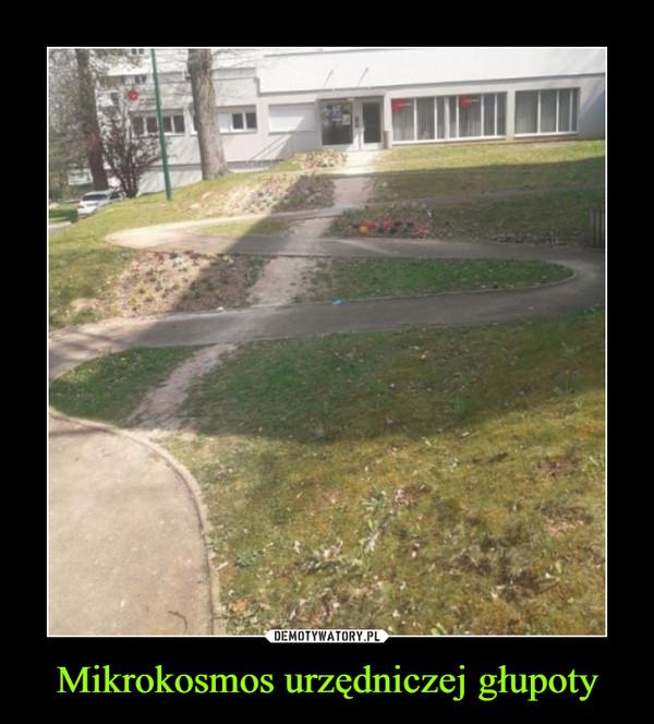 Mikrokosmos urzędniczej głupoty –