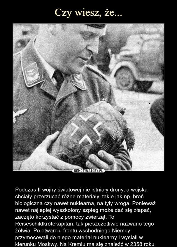– Podczas II wojny światowej nie istniały drony, a wojska chciały przerzucać różne materiały, takie jak np. broń biologiczna czy nawet nuklearna, na tyły wroga. Ponieważ nawet najlepiej wyszkolony szpieg może dać się złapać, zaczęto korzystać z pomocy zwierząt. To Reiseschildkrótekapitan, tak pieszczotliwie nazwano tego żółwia. Po otwarciu frontu wschodniego Niemcy przymocowali do niego materiał nuklearny i wysłali w kierunku Moskwy. Na Kremlu ma się znaleźć w 2358 roku