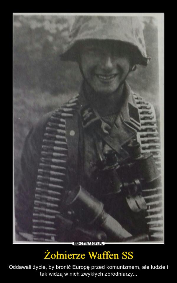 Żołnierze Waffen SS – Oddawali życie, by bronić Europę przed komunizmem, ale ludzie i tak widzą w nich zwykłych zbrodniarzy...
