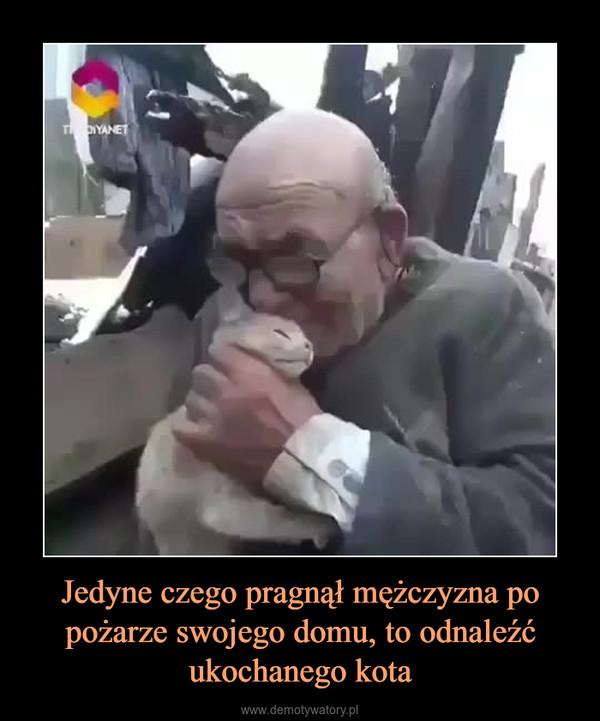 Jedyne czego pragnął mężczyzna po pożarze swojego domu, to odnaleźć ukochanego kota –