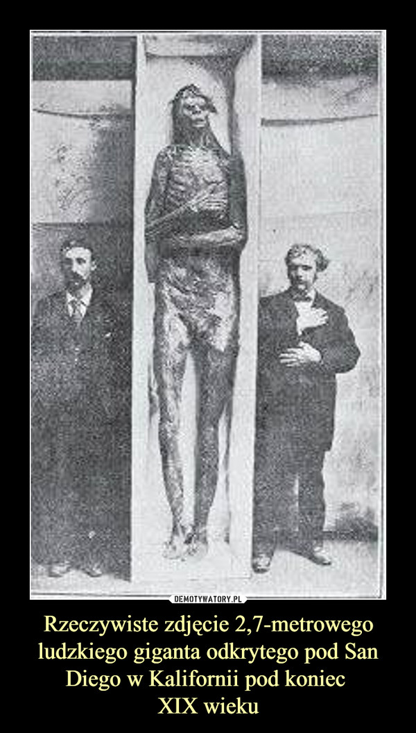Rzeczywiste zdjęcie 2,7-metrowego ludzkiego giganta odkrytego pod San Diego w Kalifornii pod koniec XIX wieku –