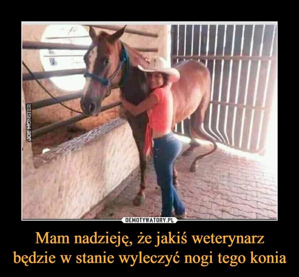 Mam nadzieję, że jakiś weterynarz będzie w stanie wyleczyć nogi tego konia –