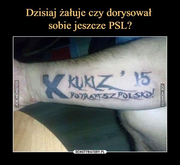 –  kukiz 15 potrafisz polsko