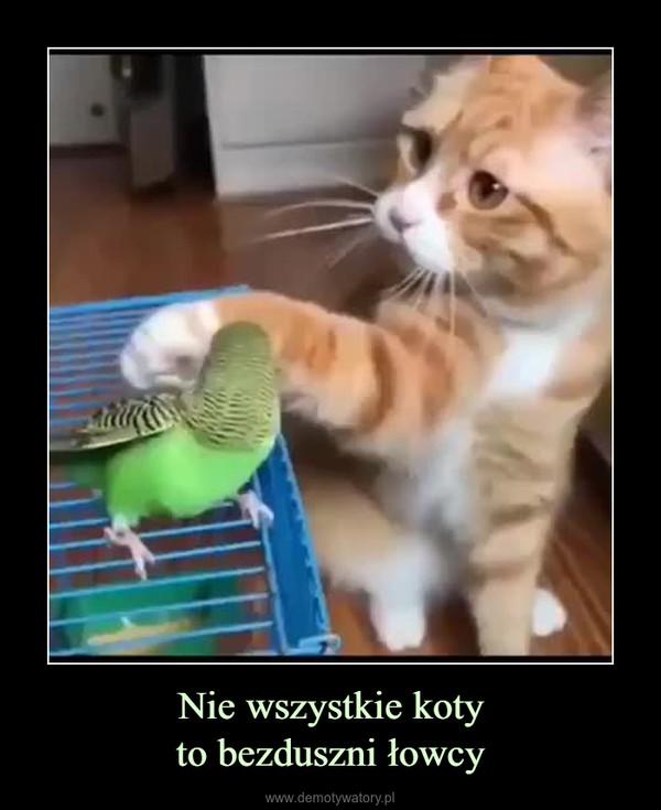 Nie wszystkie kotyto bezduszni łowcy –