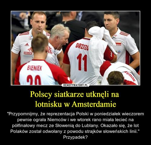 Polscy siatkarze utknęli na  lotnisku w Amsterdamie