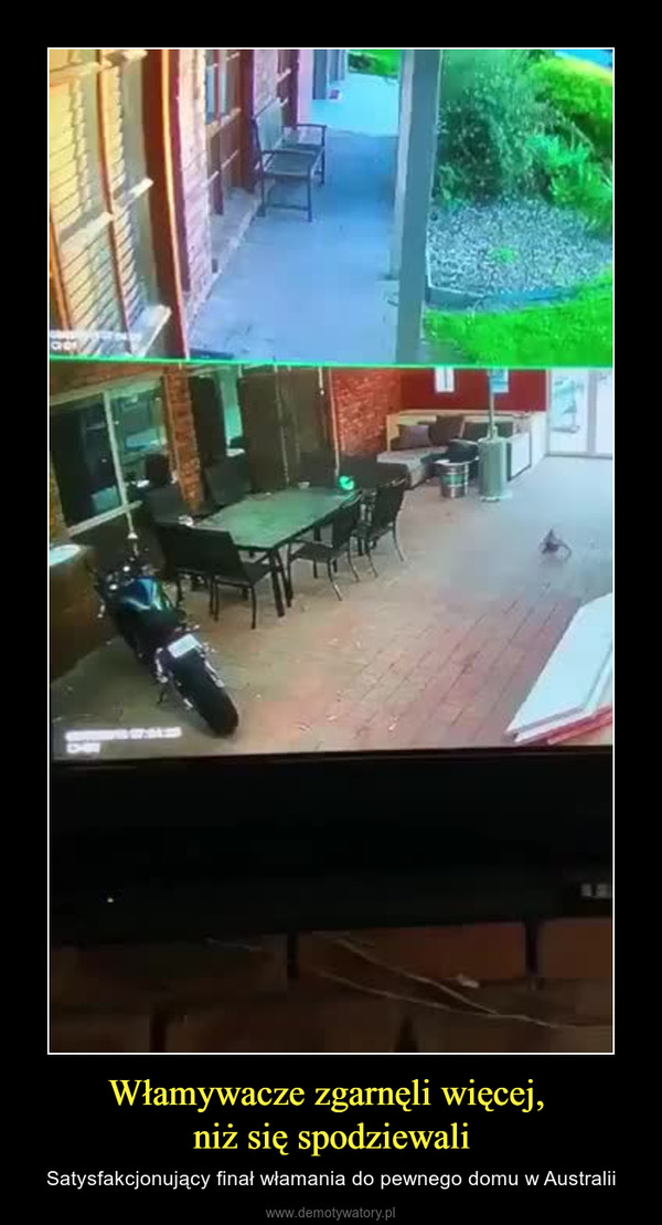 Włamywacze zgarnęli więcej, niż się spodziewali – Satysfakcjonujący finał włamania do pewnego domu w Australii