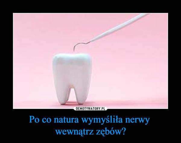 Po co natura wymyśliła nerwy wewnątrz zębów? –