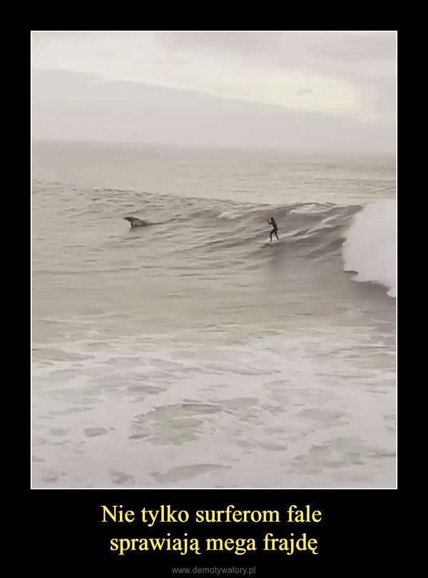 Nie tylko surferom fale sprawiają mega frajdę –