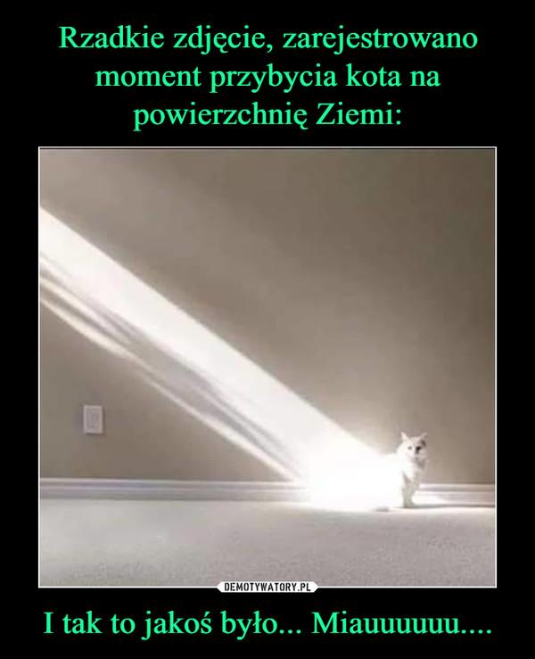 I tak to jakoś było... Miauuuuuu.... –