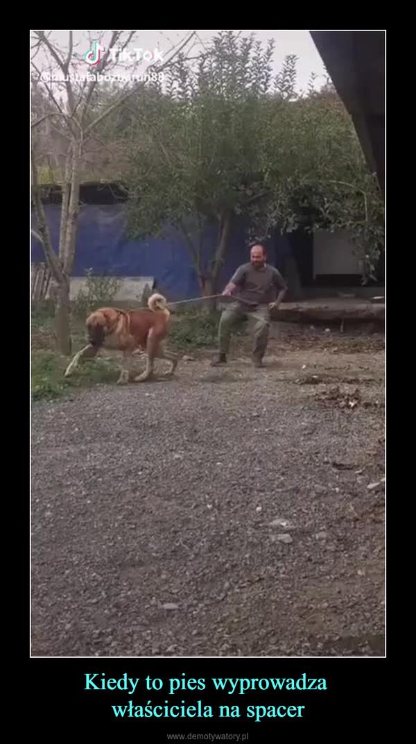 Kiedy to pies wyprowadza właściciela na spacer –