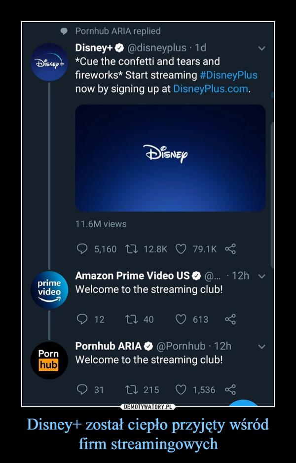 Disney+ został ciepło przyjęty wśród firm streamingowych –