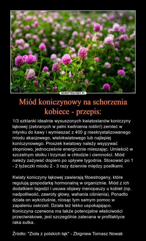 Miód koniczynowy na schorzenia kobiece - przepis: – 1/3 szklanki idealnie wysuszonych kwiatostanów koniczyny łąkowej (zebranych w pełni kwitnienia roślin!) zemleć w młynku do kawy i wymieszać z 400 g nieskrystalizowanego miodu akacjowego, wielokwiatowego lub najlepiej koniczynowego. Proszek kwiatowy należy wsypywać stopniowo, jednocześnie energicznie mieszając. Umieścić w szczelnym słoiku i trzymać w chłodzie i ciemności. Miód należy zażywać dopiero po upływie tygodnia. Stosować po 1 - 2 łyżeczki miodu 2 - 3 razy dziennie między posiłkami.Kwiaty koniczyny łąkowej zawierają fitoestrogeny, które regulują gospodarkę hormonalną w organizmie. Miód z ich dodatkiem łagodzi i usuwa objawy menopauzy u kobiet (np. nadpotliwość, zawroty głowy, wahania ciśnienia). Ponadto działa on wykrztuśnie, niosąc tym samym pomoc w zapaleniu oskrzeli. Działa też lekko uspokajająco. Koniczyna czerwona ma także potencjalne właściwości przeciwrakowe, jest szczególnie zalecana w profilaktyce raka sutka.Źródło: ''Zioła z polskich łąk'' - Zbigniew Tomasz Nowak