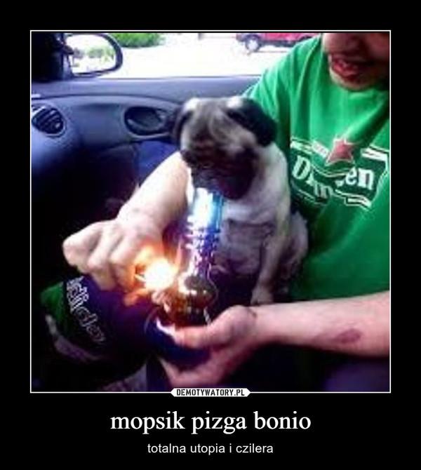 mopsik pizga bonio – totalna utopia i czilera