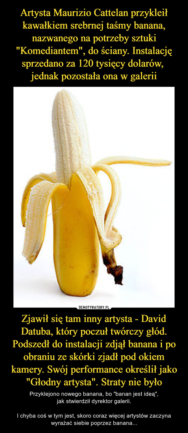 """Zjawił się tam inny artysta - David Datuba, który poczuł twórczy głód. Podszedł do instalacji zdjął banana i po obraniu ze skórki zjadł pod okiem kamery. Swój performance określił jako """"Głodny artysta"""". Straty nie było – Przyklejono nowego banana, bo """"banan jest ideą"""",jak stwierdził dyrektor galerii.I chyba coś w tym jest, skoro coraz więcej artystów zaczyna wyrażać siebie poprzez banana..."""