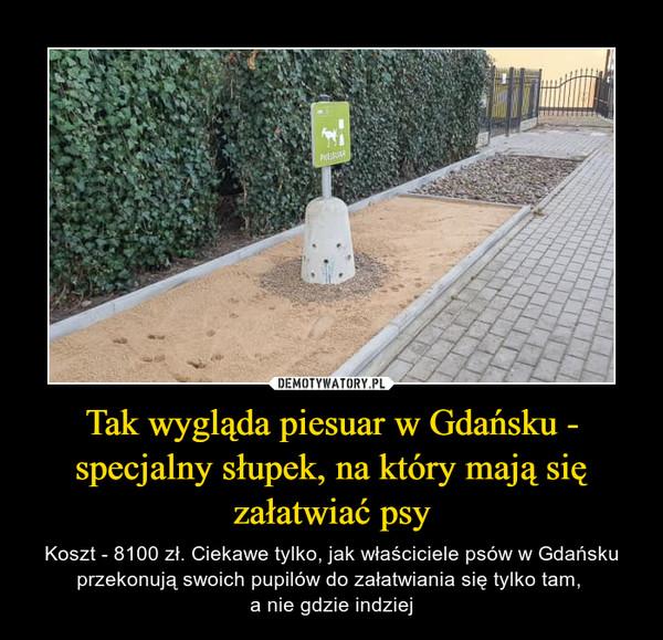 Tak wygląda piesuar w Gdańsku - specjalny słupek, na który mają się załatwiać psy – Koszt - 8100 zł. Ciekawe tylko, jak właściciele psów w Gdańsku przekonują swoich pupilów do załatwiania się tylko tam, a nie gdzie indziej