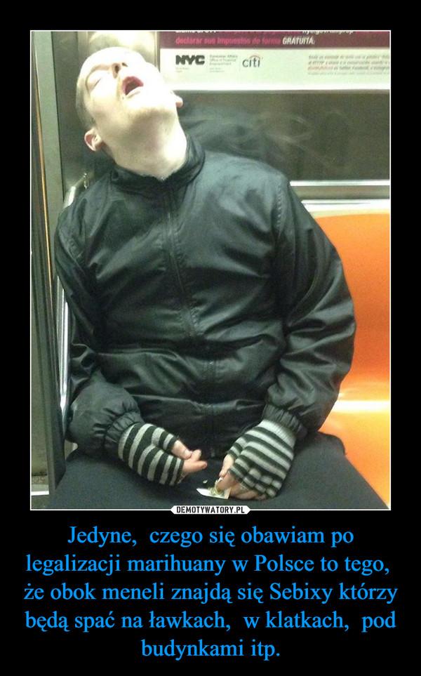 Jedyne,  czego się obawiam po legalizacji marihuany w Polsce to tego,  że obok meneli znajdą się Sebixy którzy będą spać na ławkach,  w klatkach,  pod budynkami itp. –