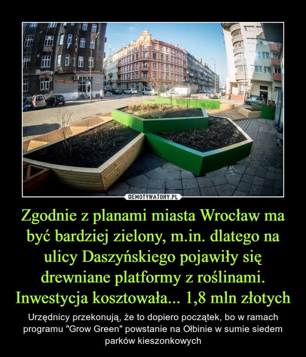 """Zgodnie z planami miasta Wrocław ma być bardziej zielony, m.in. dlatego na ulicy Daszyńskiego pojawiły się drewniane platformy z roślinami. Inwestycja kosztowała... 1,8 mln złotych – Urzędnicy przekonują, że to dopiero początek, bo w ramach programu """"Grow Green"""" powstanie na Ołbinie w sumie siedem parków kieszonkowych"""