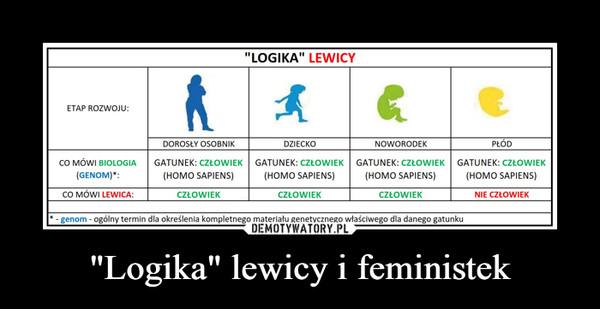 """Logika"" lewicy i feministek –"