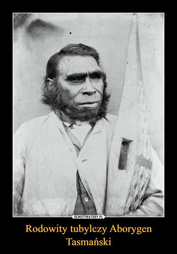 Rodowity tubylczy Aborygen Tasmański –