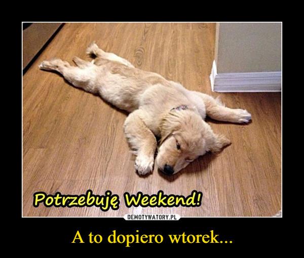 A to dopiero wtorek... –  Potrzebuję Weekend!