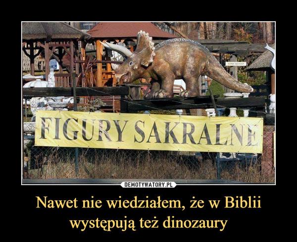 Nawet nie wiedziałem, że w Biblii występują też dinozaury –  figury sakralne