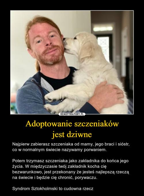 Adoptowanie szczeniaków jest dziwne