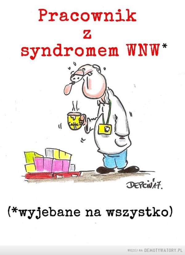 WNW –  Pracowniksyndromem WNW*DEPciNAt.(*wyjebane na wszystko)
