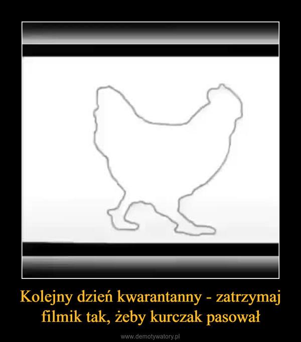 Kolejny dzień kwarantanny - zatrzymaj filmik tak, żeby kurczak pasował –